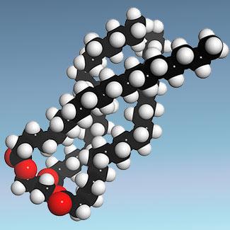 ácidos grasos hidrogenados