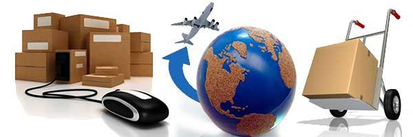 transportes internacionales raudovan