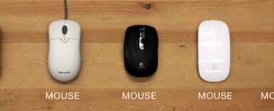 evolucion mouse